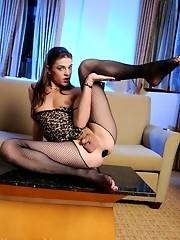 Stunning tgirl Kimberly Kills posing in hot fishnet stockings